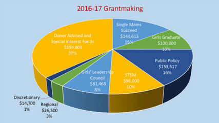 2016-17 Grantmaking Graph