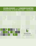 Overlooked & Undercounted Report